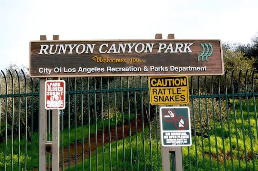 Reisetips fra Los Angeles: Runyon Canyon