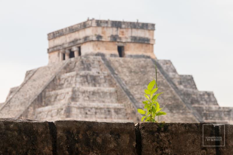 Mexiko Maya 3 - Kukulcán