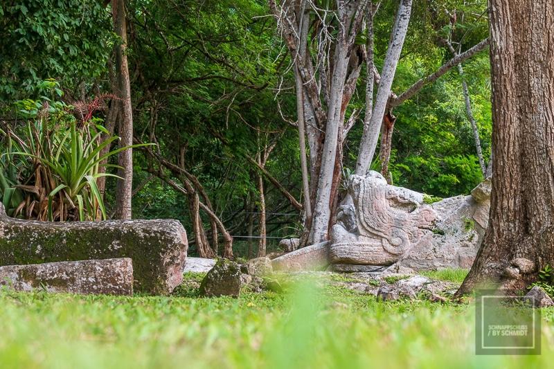 Mexiko Maya 3 - Tempelanlage