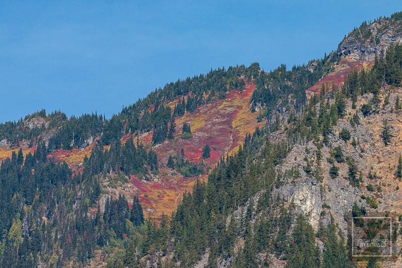 North Cascades National Park - Bergflanke