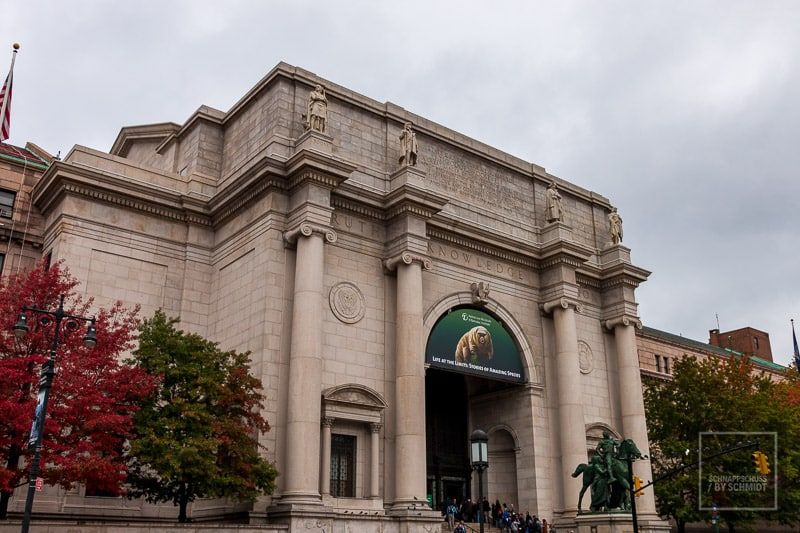 New York City - Museum of National History