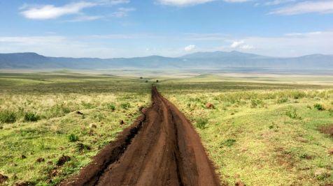 Ngorongoro_Krater_Strasse