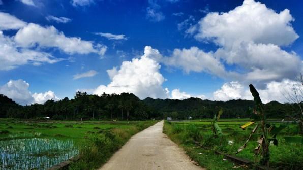 Rondreis Filipijnen: rijstvelden Bohol uitzicht