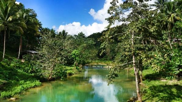 Rondreis Filipijnen: rijstvelden Bohol Loboc River