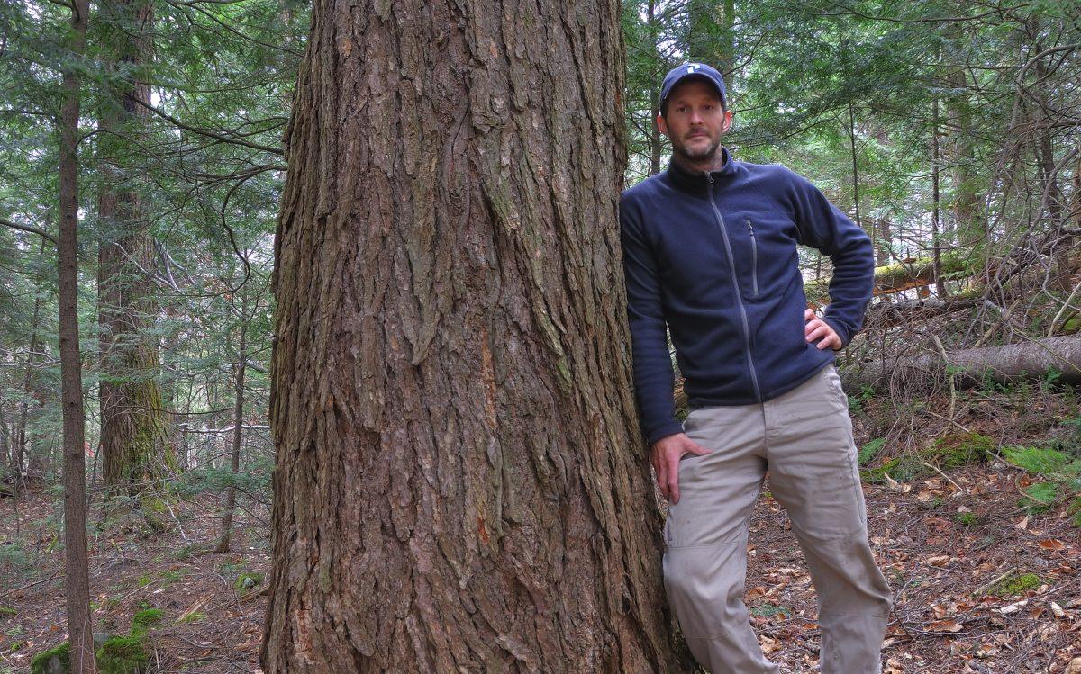 Formations arboriculture raisonnée
