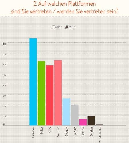 SozMed-Plattformen2013