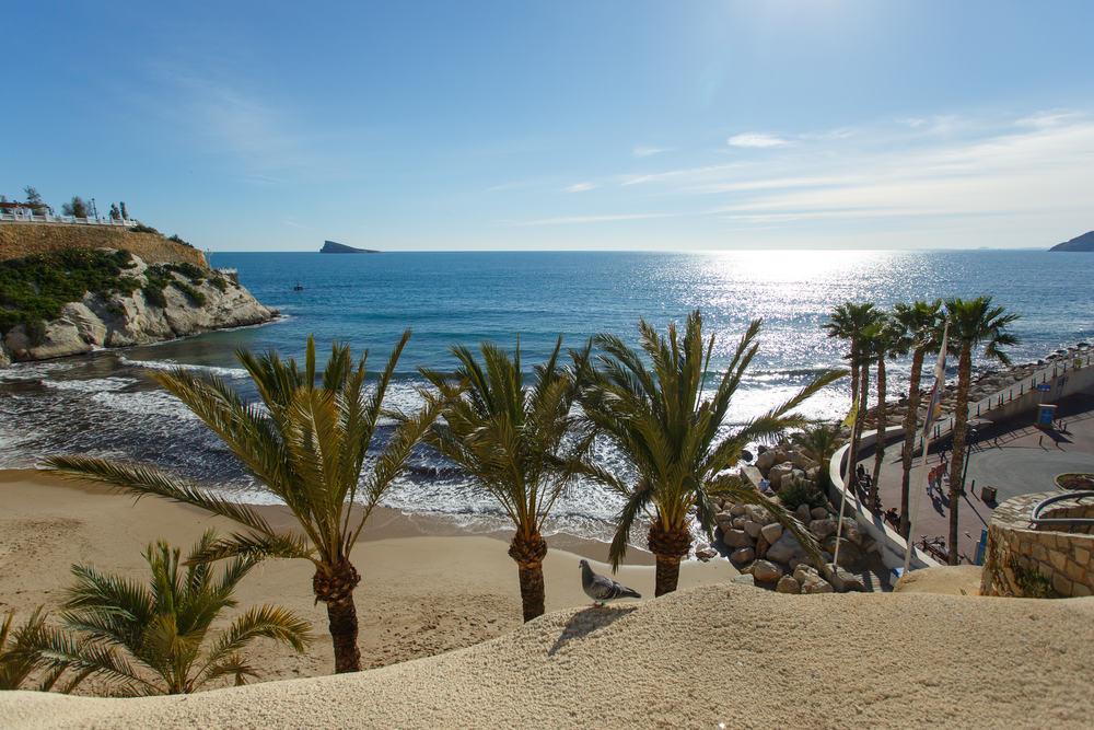 Benidorm Poniente Strand - Alicante i Spanien