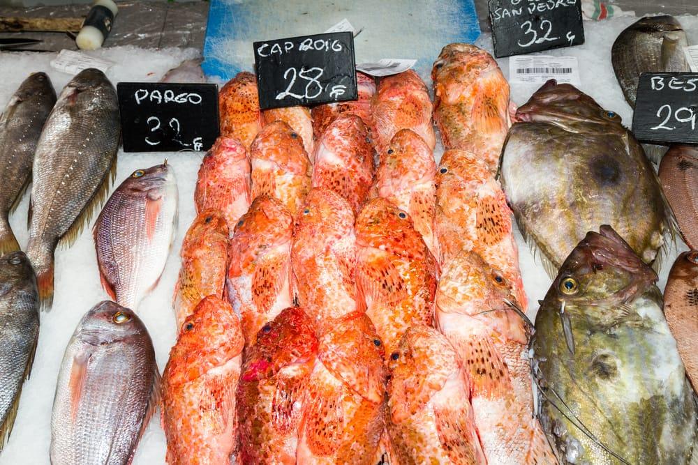Fiskemarked i Palma - Mallorca i Spanien