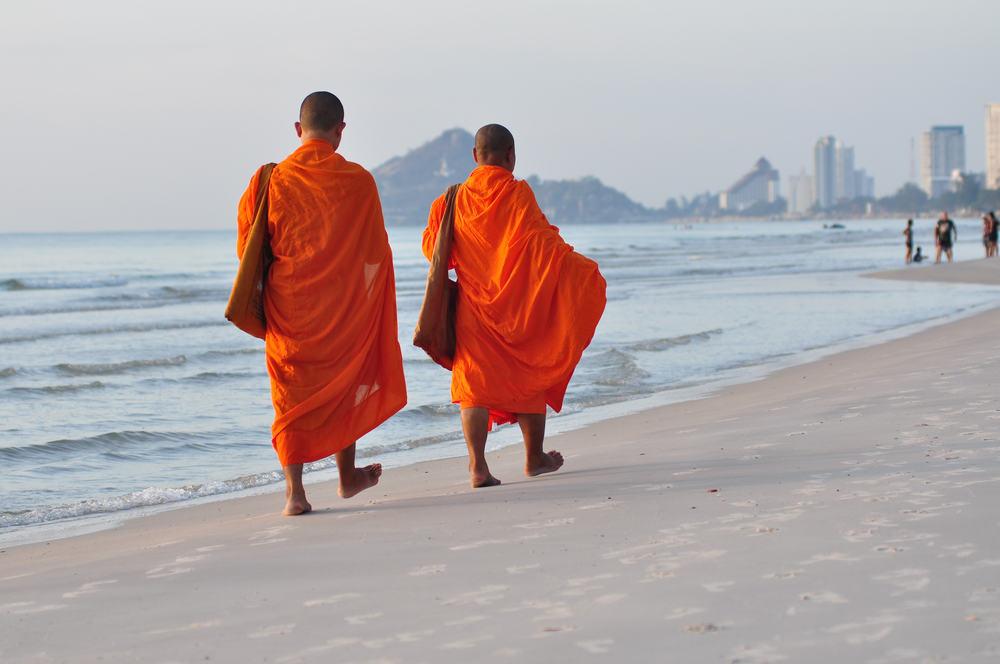 Munke på stranden - Hua Hin i Thailand
