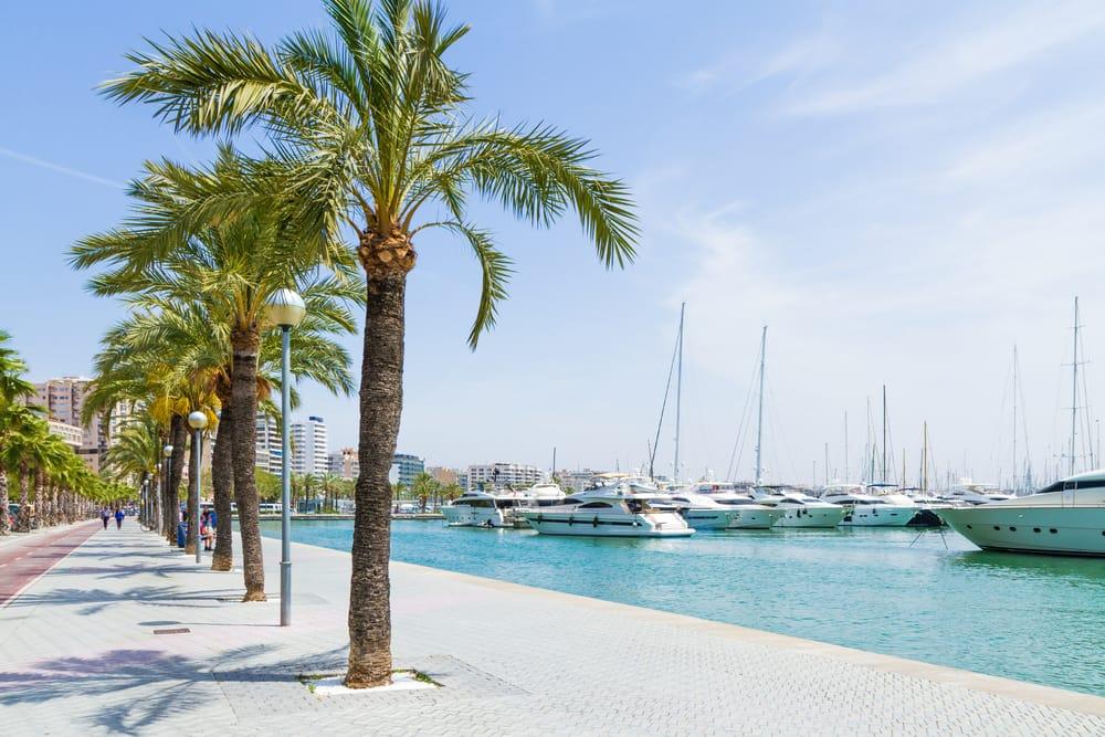 Marinaen i Palma de Mallorca - Spanien