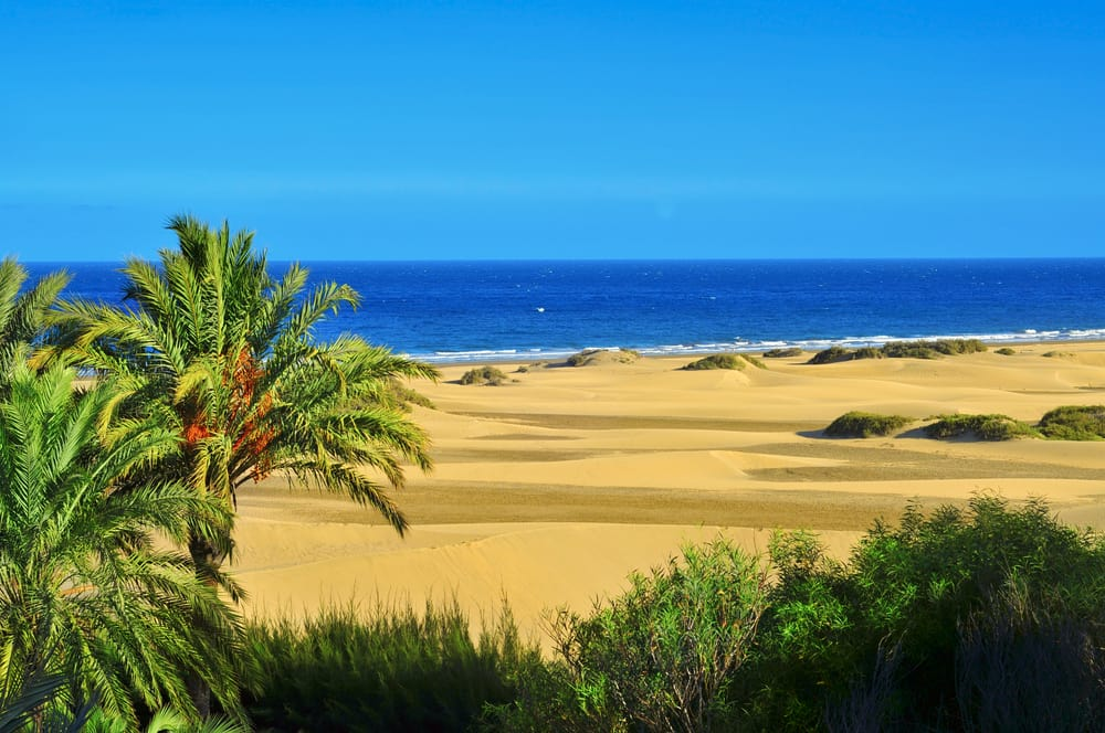Naturreservatet Maspalomas - Gran Canaria i Spanien