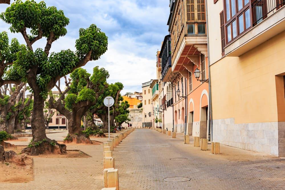 Palma de Mallorca - Mallorca i Spanien