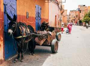 Billig ferie i Marokko
