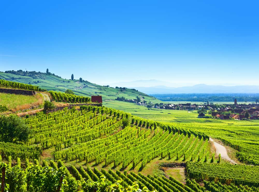 Kayserberg dalen - Alsace i Frankrig
