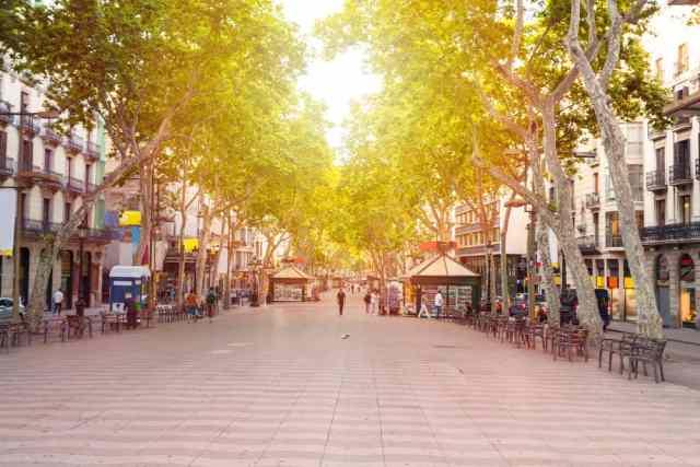 Barcelonas mest populære gade - La Rambla - på en tidlig morgen stort set uden mennesker