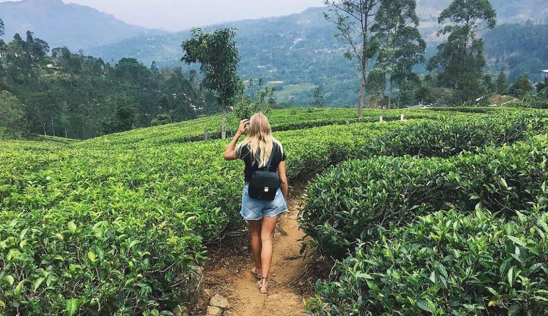 Mathilde Odgaard i teplantage på Sri Lanka