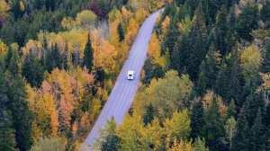 Canada - autocamper, skov, landevej - rejser