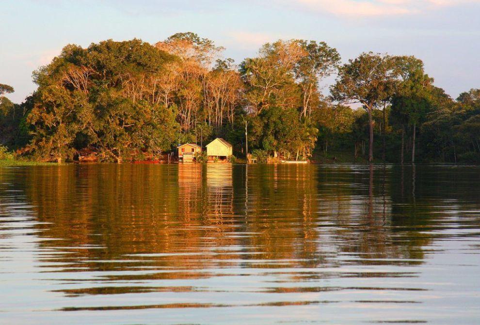 Brazil Amazonas