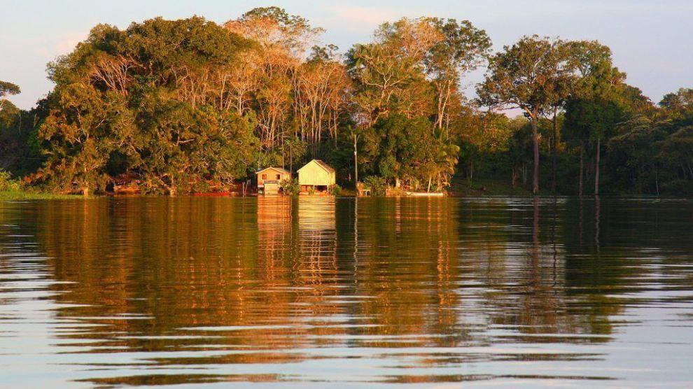 Brasilien Amazonas