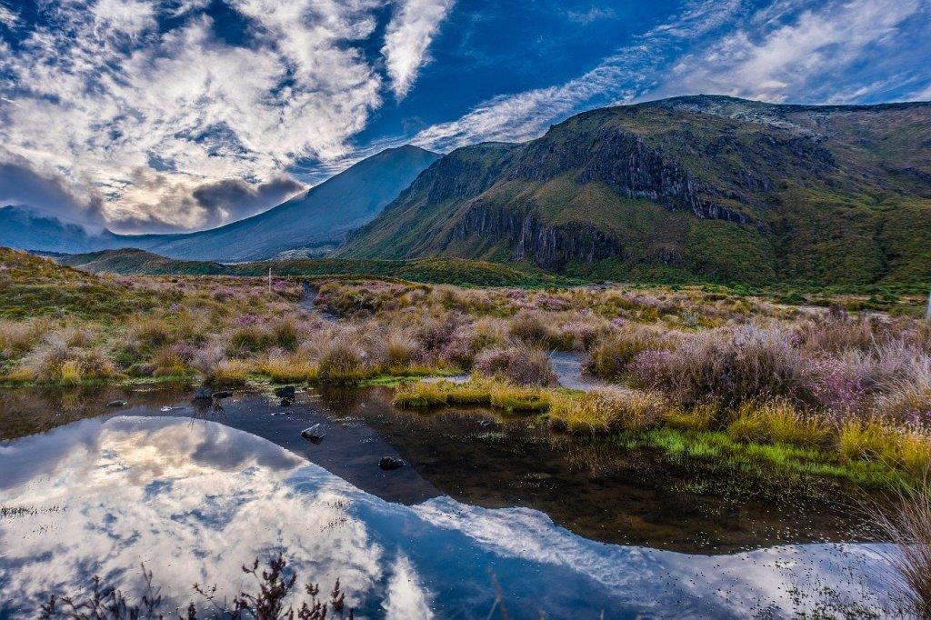 New Zealand Tongariro Nordøen rejser