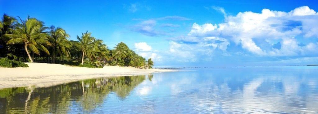 Samoa - strand - hav - palmer