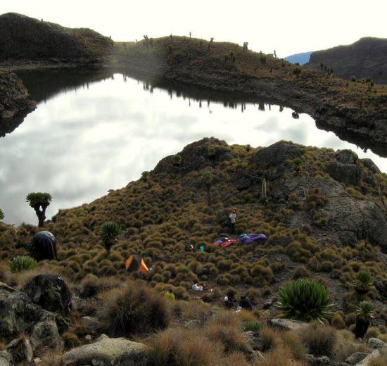 Planina Kenija - Afrika - putovanje