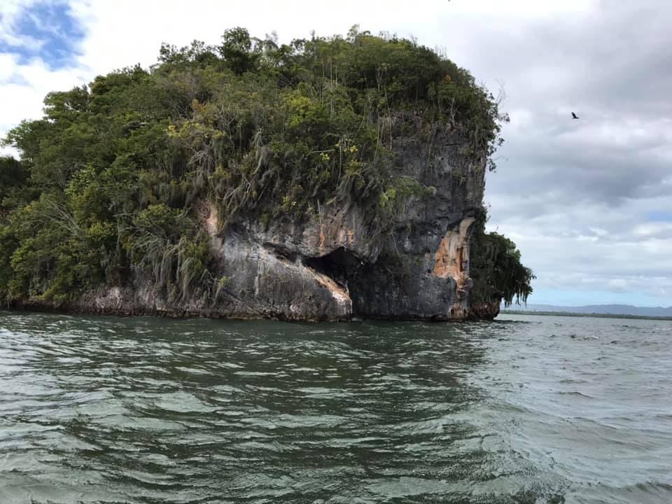 Den Dominikanske Republik los haitises Punta Cana - Rejser