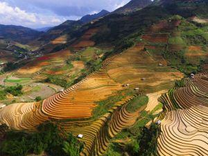 Vietnam Nordvietnam Rismark Rejsetilbud Rejser