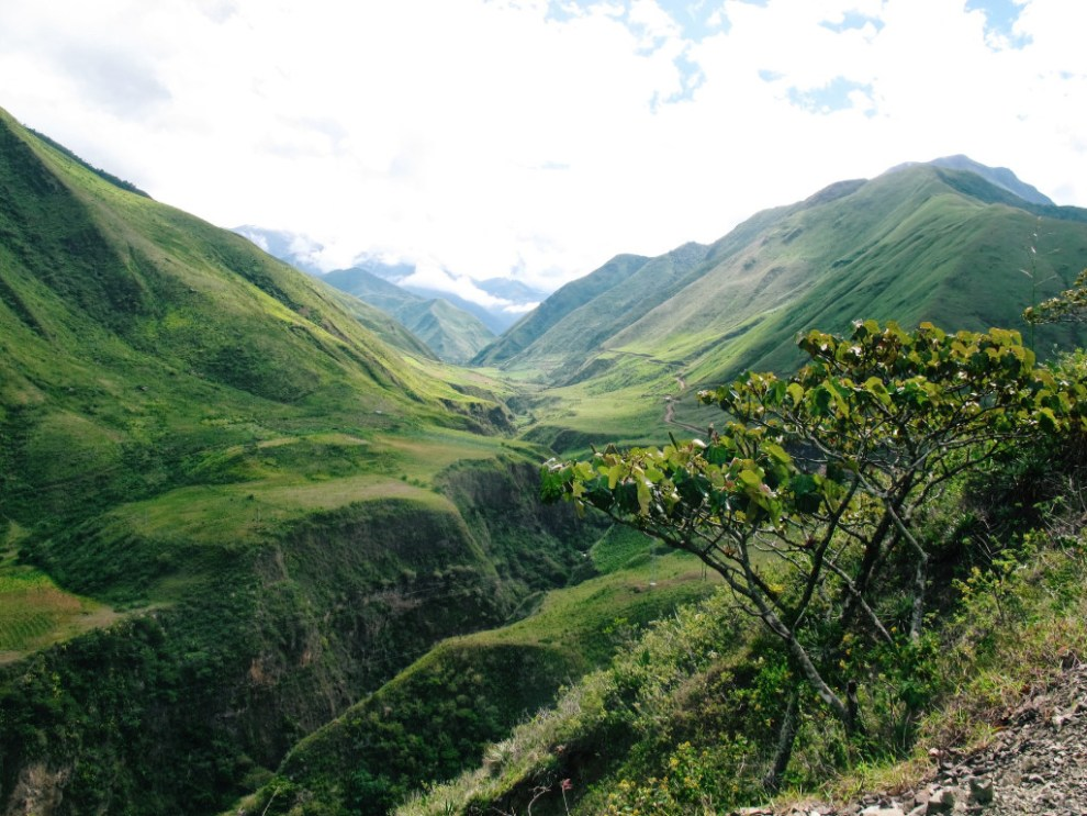 Ecuador - green hills - travel