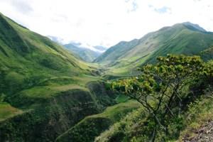 Ecuador - grønner bakker - rejser