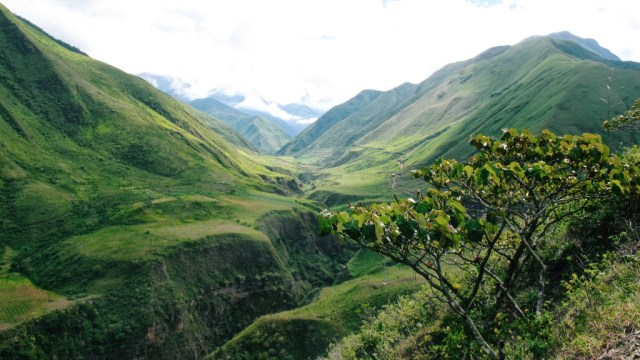 Ecuador - green hills - travel