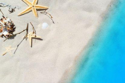 Strand, sand, søstjerner - rejser