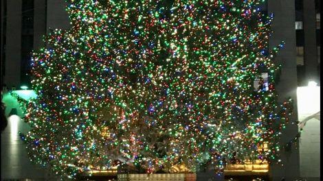 Jul, New York, Juletræ, USA