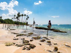 スリランカビーチのローカル旅行