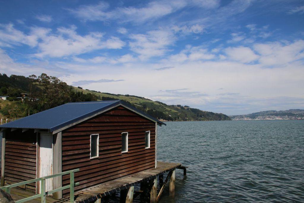 New Zealand Otago Peninsula Coast Travel