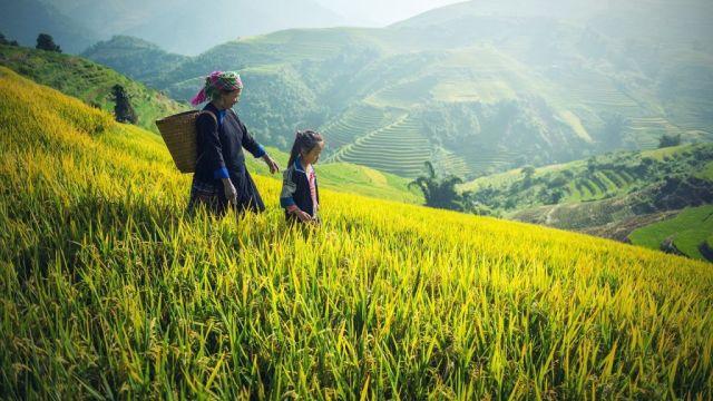 Planine Kambodže Mark putuju