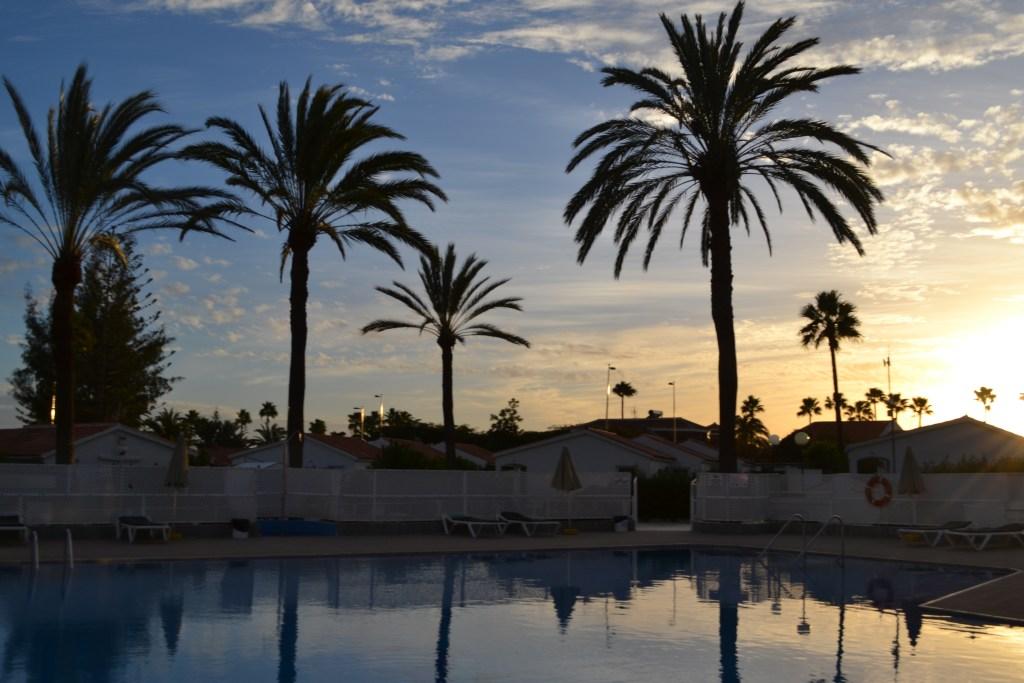 Gran Canaria pool palmer Katrine Rejser