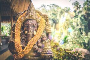 Indonesien Bali kultur kunst elefant rejser