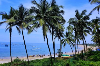 Indien - Goa, strand, palmer - rejser