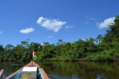 Bolivia Amazonas rejser