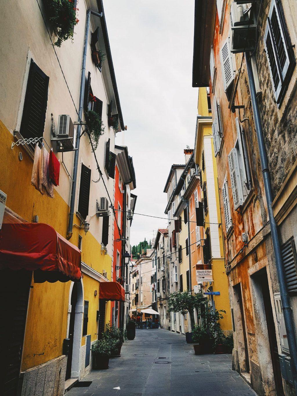 Slovenien Landsby Rejser