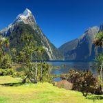 טיולי טבע בניו זילנד