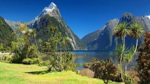 New Zealand Natur Rejser