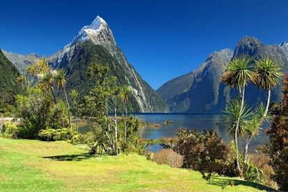 New Zealand Nature Travel
