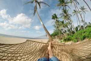 Strand, hængekøje, palmer - rejser