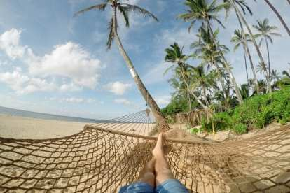 Beach, hammock, palm trees - travel
