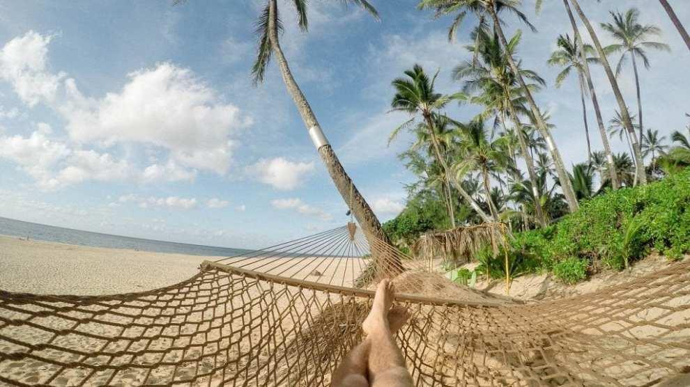 Beach, hammock, palm trees - travel