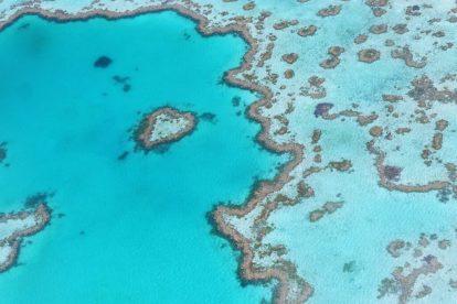 Veliki koraljni greben, australija, koraljni greben, putovanja, voda