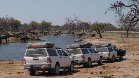 expédition, botswana, safari, quatre roues motrices, visites et voyages en pousse-pousse, voyages