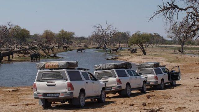 spedizione, botswana, safari, quattro ruote motrici, tour in risciò e viaggi, viaggi